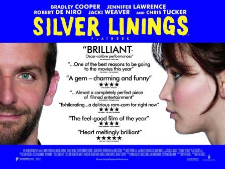 Silver Linings Playbook blurbs