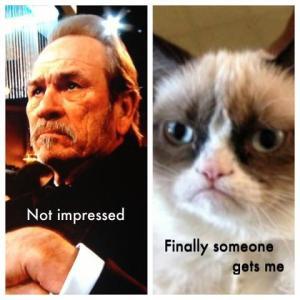 Golden-Globes-2013-Tommy-Lee-Jones-Is-Grumpy-the-Cat-2